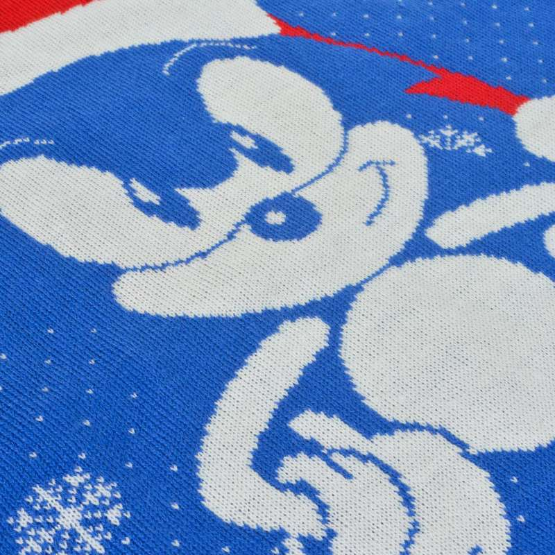Sonic The Hedgehog Santa Sonic Christmas Jumper / Ugly Sweater